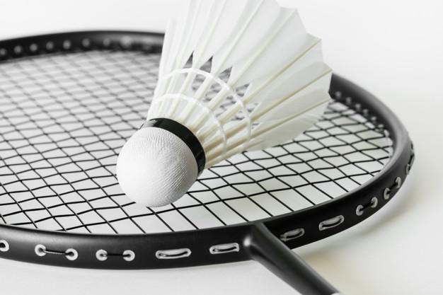 Badmintonbold